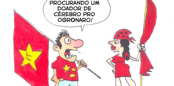 Bolsonaro teme enfrentar Haddad nos debates