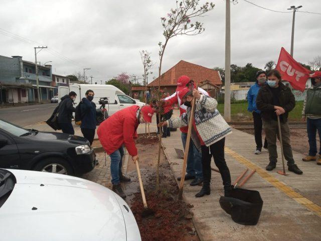 CUT-RS planta árvores no 26º Grito dos Excluídos e homenageia ...