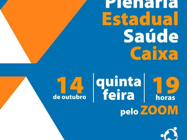 Fetrafi-RS realiza plenária estadual virtual sobre Saúde Caixa, ...